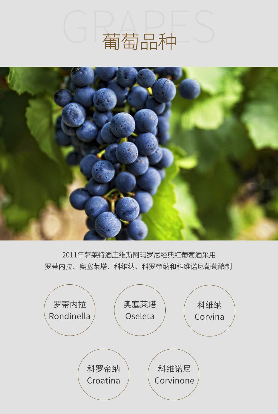 2011年萨莱特酒庄维斯阿玛罗尼经典红葡萄酒--葡萄品种