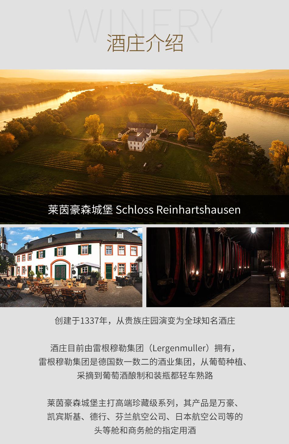 莱茵豪森城堡