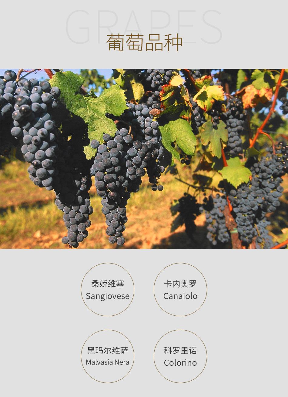2013年力保仙老藤鲁芬娜基安帝珍藏红葡萄酒-葡萄品种