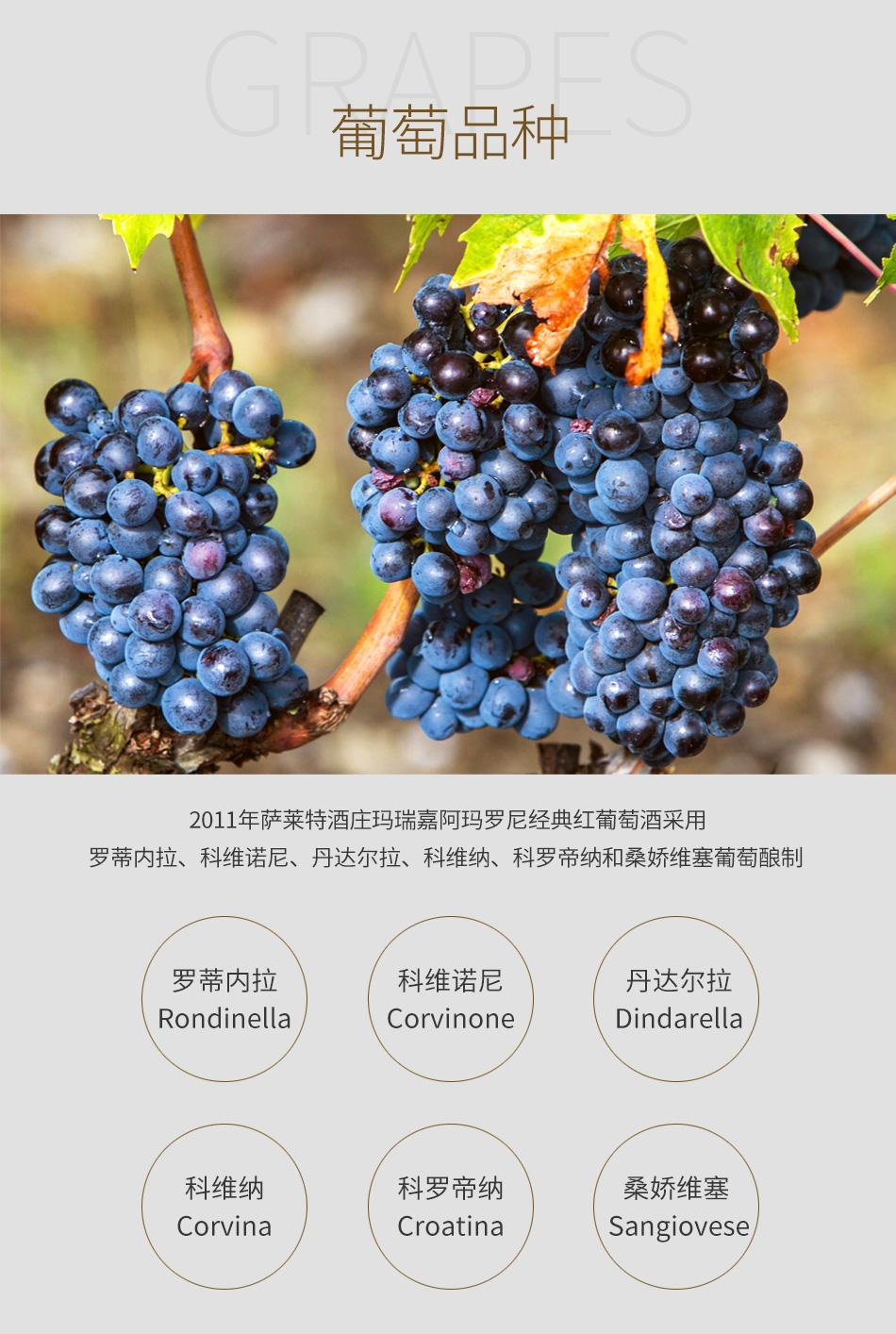 2011年萨莱特酒庄玛瑞嘉阿玛罗尼经典红葡萄酒--葡萄品种