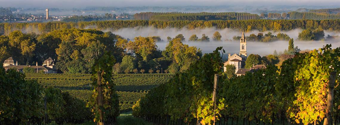法国葡萄酒产区一览